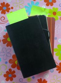 Meine Notizbücher