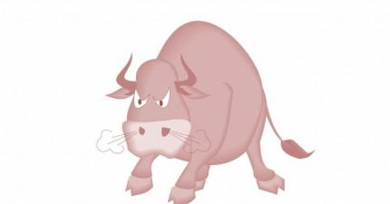 Ein wütender Stier