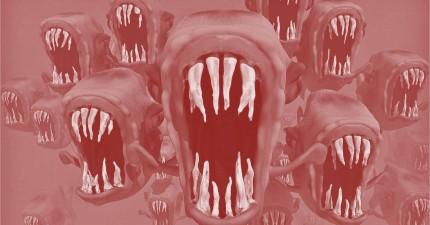 Monster aus der Social Media Hölle